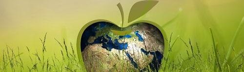 Tec2Web apoia o TI Verde